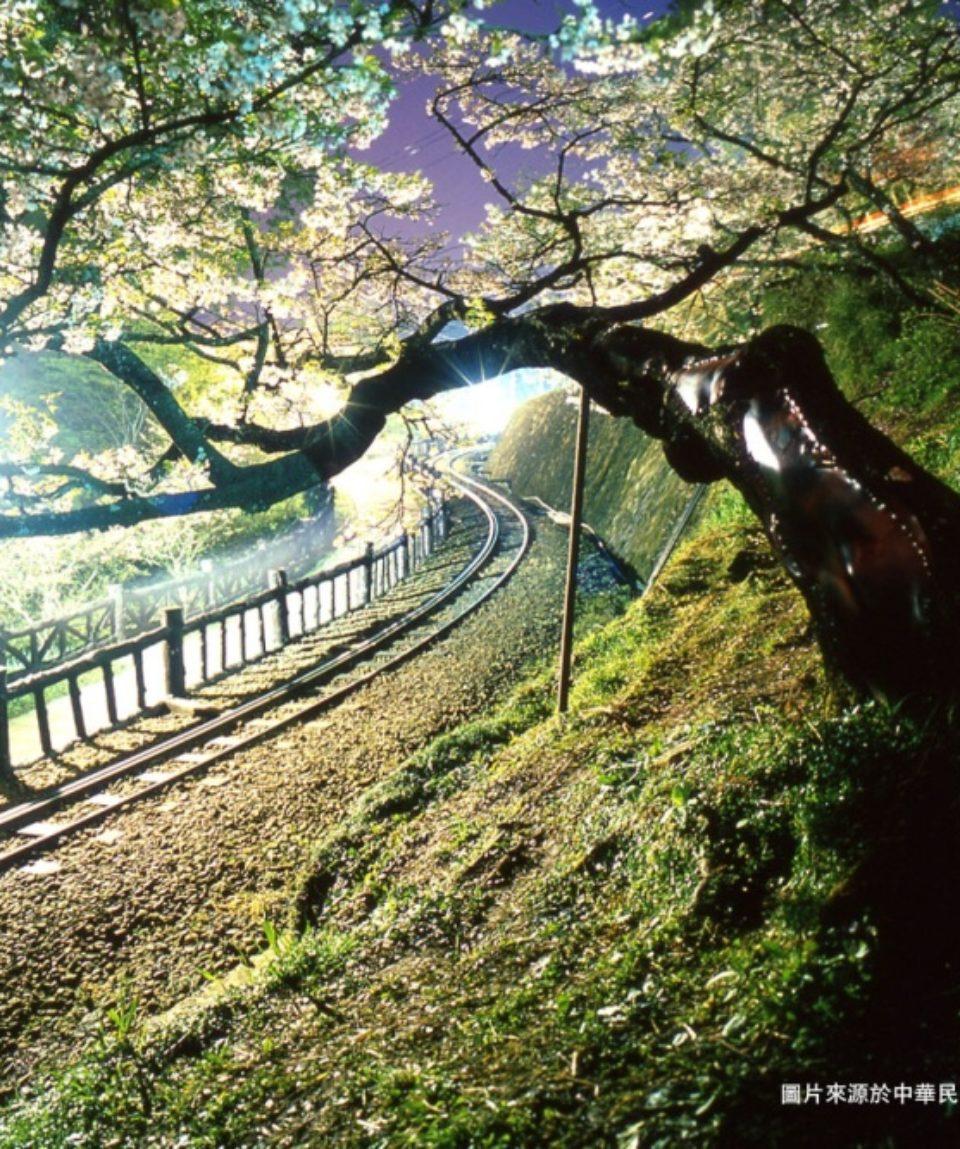 uschinatrip-taiwan2-park